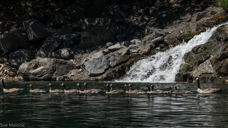 Applegate Lake Kayak-17.jpg