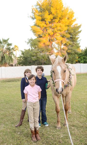 Equestrian Birthday Tea Tikkido (72 of 84).JPG