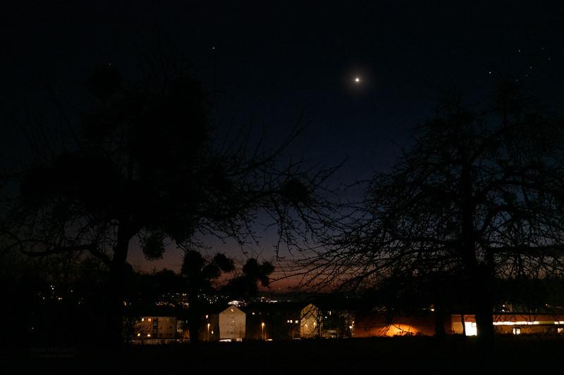 Venus 13.01.2020.jpg