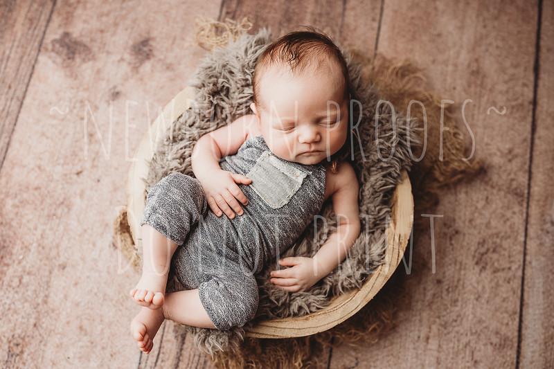 miles newborn proofs
