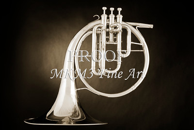 French Horn  Fine Art Photograph Prints in Black and White
