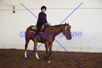Novice Rider Western  110724