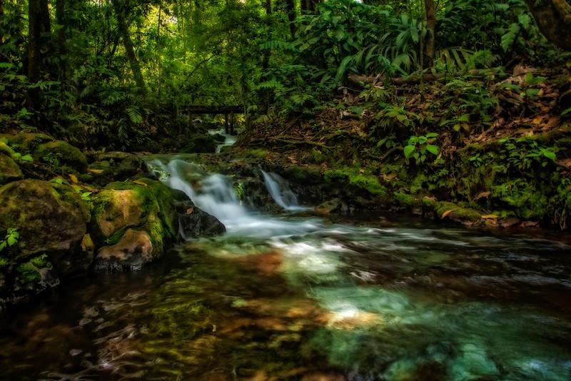 Costa Rica 2016 20160405-16-14-_MG_2754-006-Edit.jpg