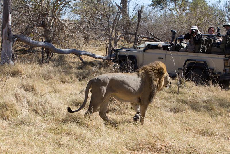 Botswana-20110716-3643.jpg