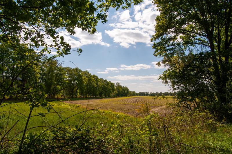 GrensPark Kempen~Broek, omgeving Stramprooierbroek & St.-Maartensheide 09.jpg