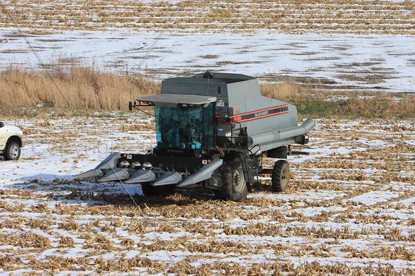Farm Scenes  11-23-08