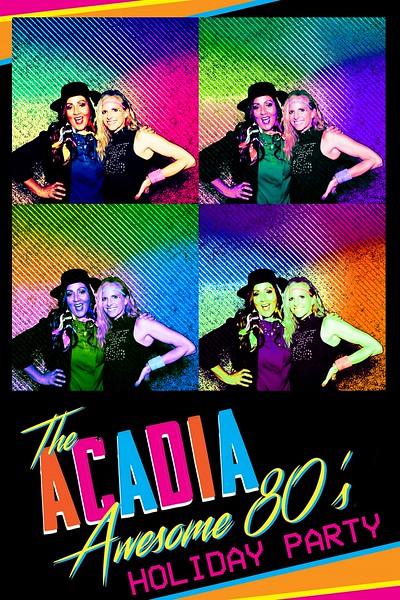 2018-12-14 Acadia Warhol Photo Booth
