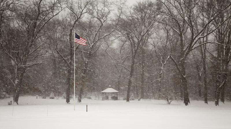 Snowy Flag