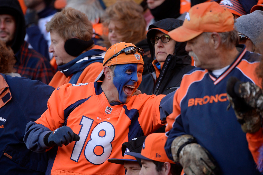 . Broncos fans cheer on the team in the second quarter. The Denver Broncos take on the San Diego Chargers at Sports Authority Field at Mile High in Denver on January 12, 2014. (Photo by Craig F. Walker/The Denver Post)