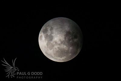 Total Lunar Eclipse, Apr 2015
