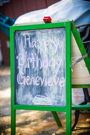 Genevieve's 6th Birthday!