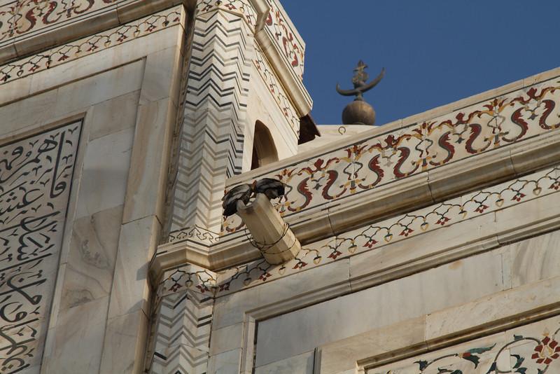 India_2012Feb-6017.jpg