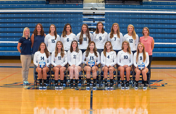 Wheaton College Volleyball 2017