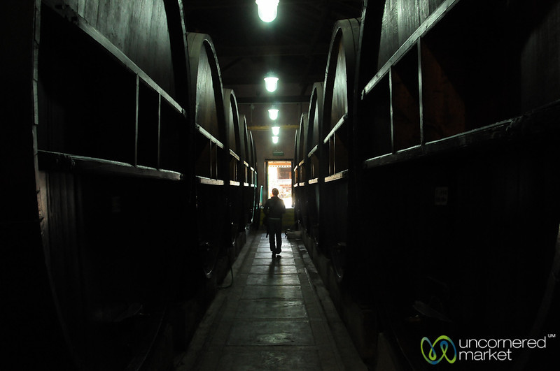 Walking Through La Rural Winery - Mendoza, Argentina