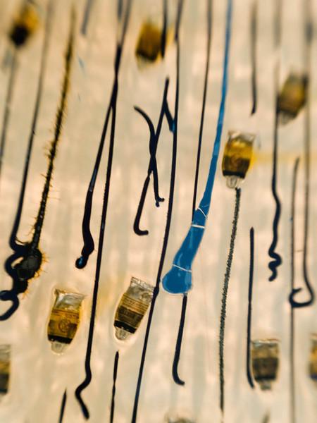 Hirschhorn Museum 31.jpg