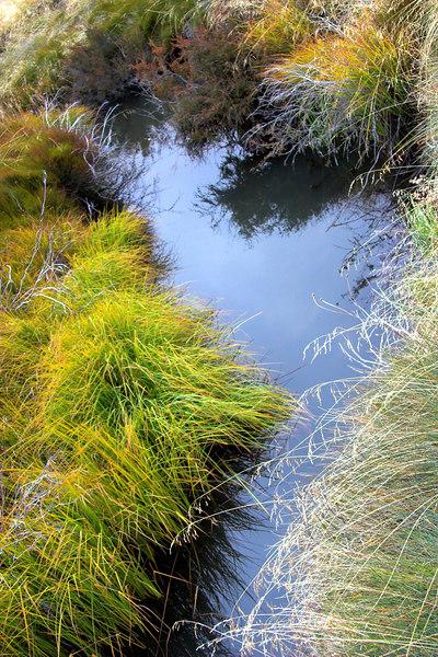 Running Jump Creek.