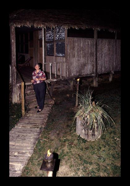 Amazon Research Center - Peru - 1994.jpg