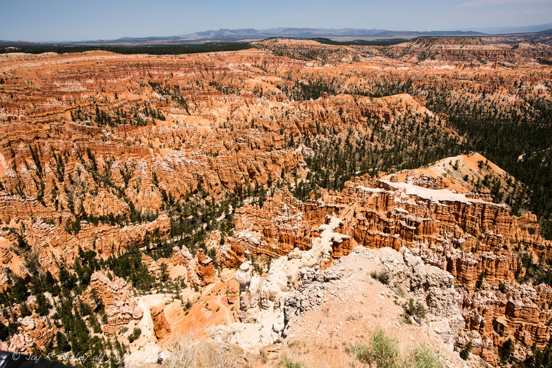 Bryce Canyon from Bryce point.  The beauty of the canyon is not reveled until the sun hits the red rocks.