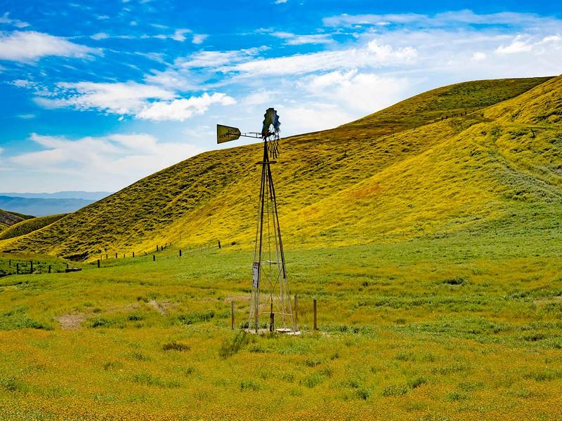 Carrizo Plain_Windmill-1.jpg