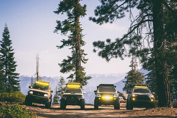 Sequoia NP (Randy's Bday)