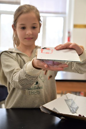 Shedding a Light on Fourth Grade Science