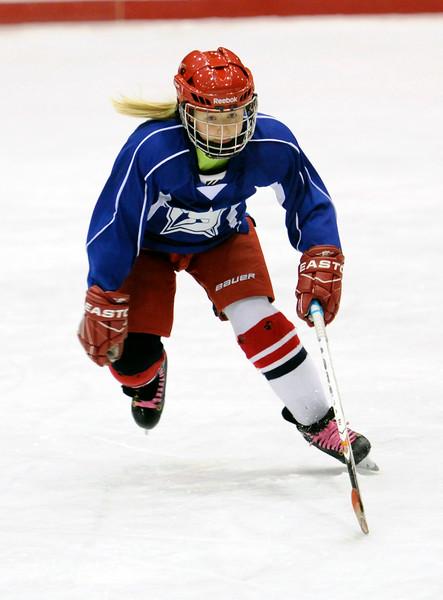 2015 Ice Hockey Game 4