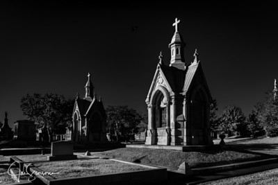 Metairie Cemetery in B&W 11-03-2018