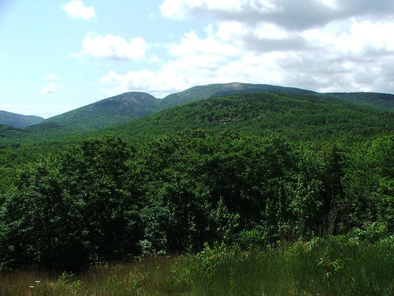 Maine 2007 009.JPG