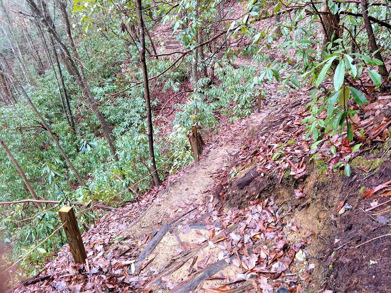 South Carolina: Sassafras Falls Trail