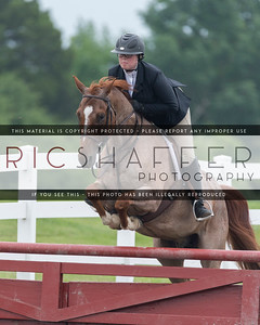 2016 NJPHA Annual USEF Regional II Bonus Point Show