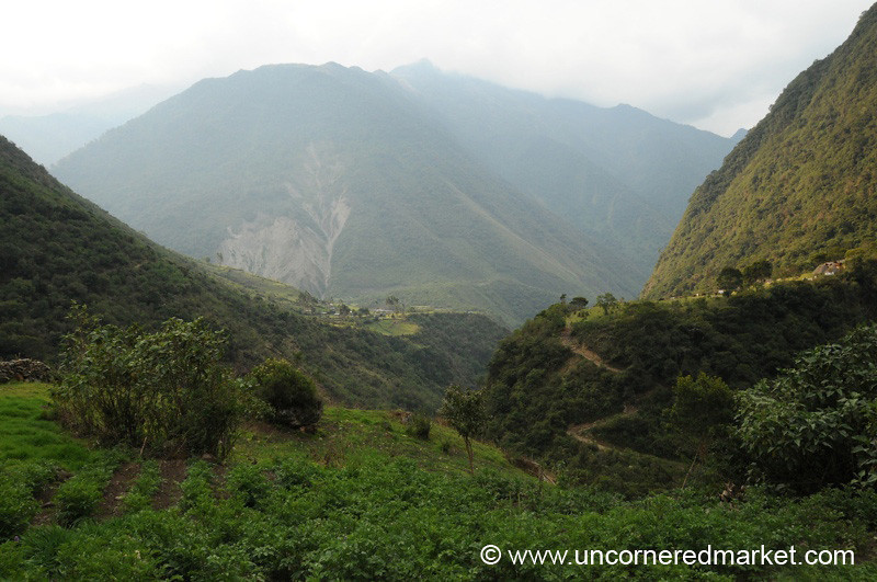 Lush Valleys - Day 3 of Salkantay Trek, Peru