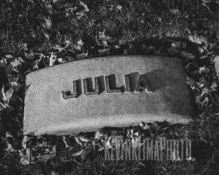 Graceland110218-201.jpg