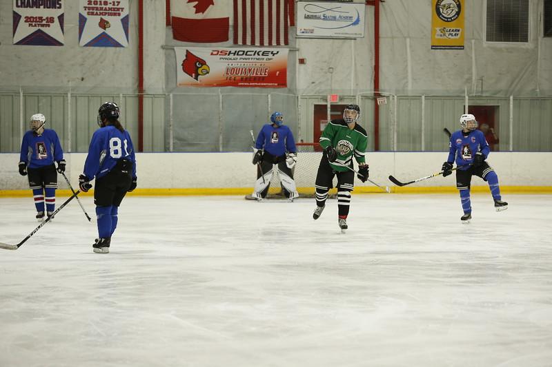 Hockeynauts vs. Grizzlies