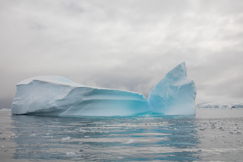 Curtiss Bay Icescape - Antarctica