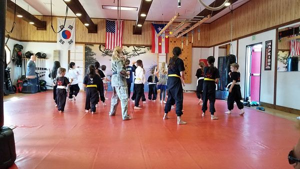 2017 PD Youth Hapkido
