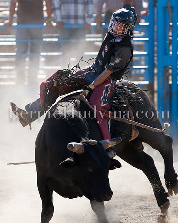 Bull Riding  Saturday