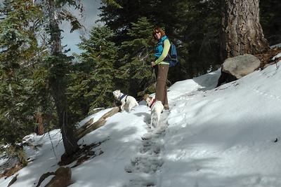 Mt Waterman Snow Hike November 13, 2011
