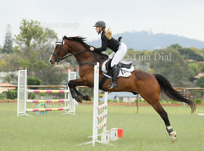 Hubbard's IQ Show Jumping Competition