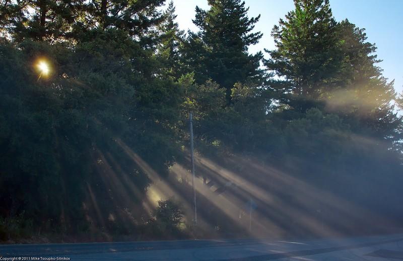 Santa Cruz Mountains at dawn
