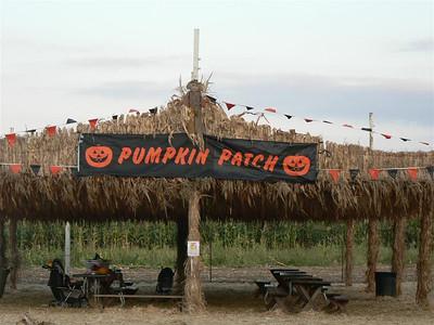 Grant Road Pumpkin Patch