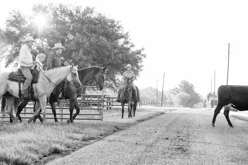 Breely Barthle Ranch B&W 3 (18 of 46).jpg
