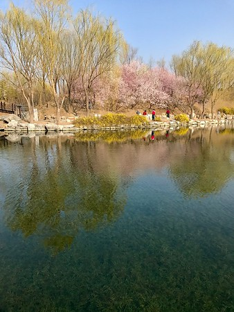 old summer palace spring, Mar 24,25