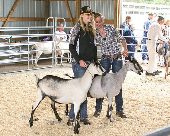 2017 Carlton County Fair Photos