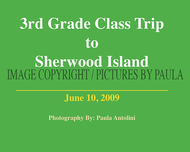 Sherwood Island Class Trip ~ Bethel School 3rd Grade ~ June 10, 2009