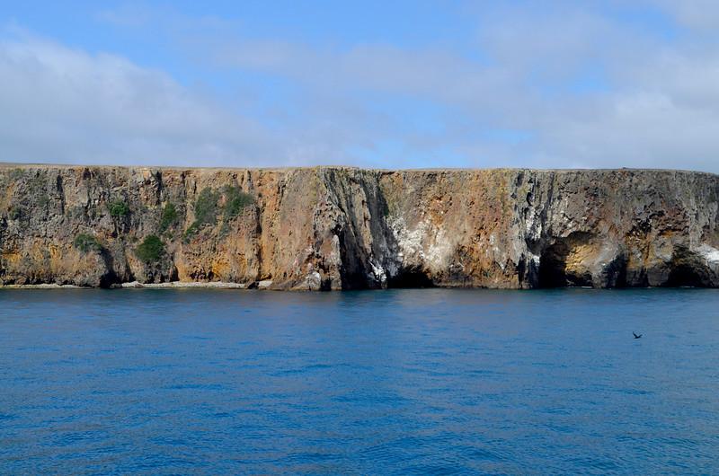 Cliffs of the Santa Cruz Island.