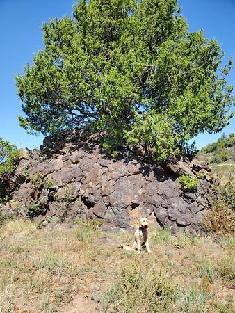 Capulin Volcano, New Mexico
