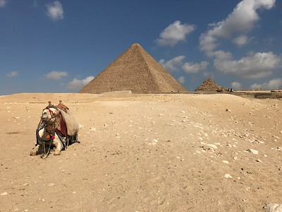 Giza, Egypt (March 2017)