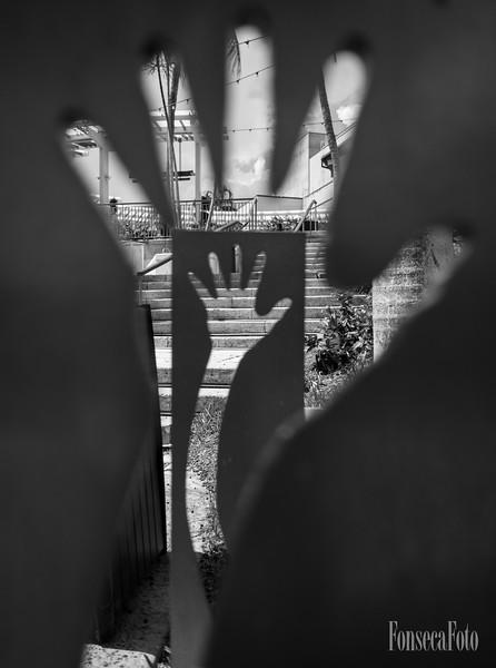 fonsecafoto-15mm17-0021.jpg