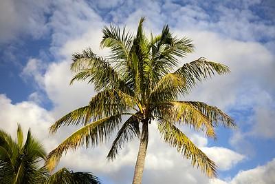 Kauai February 2017