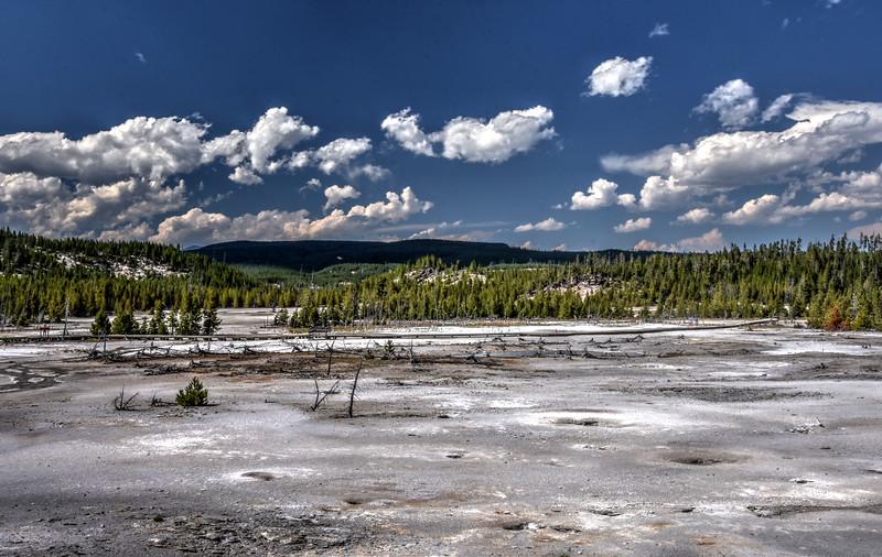 Norris Geyser Basin in Yellowstone National Park